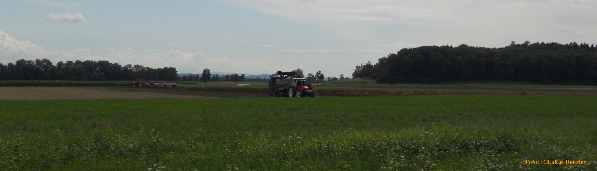 Prächtig Landwirtschaft auf Moorböden: Unliebsame Forschungsergebnisse #GB_91